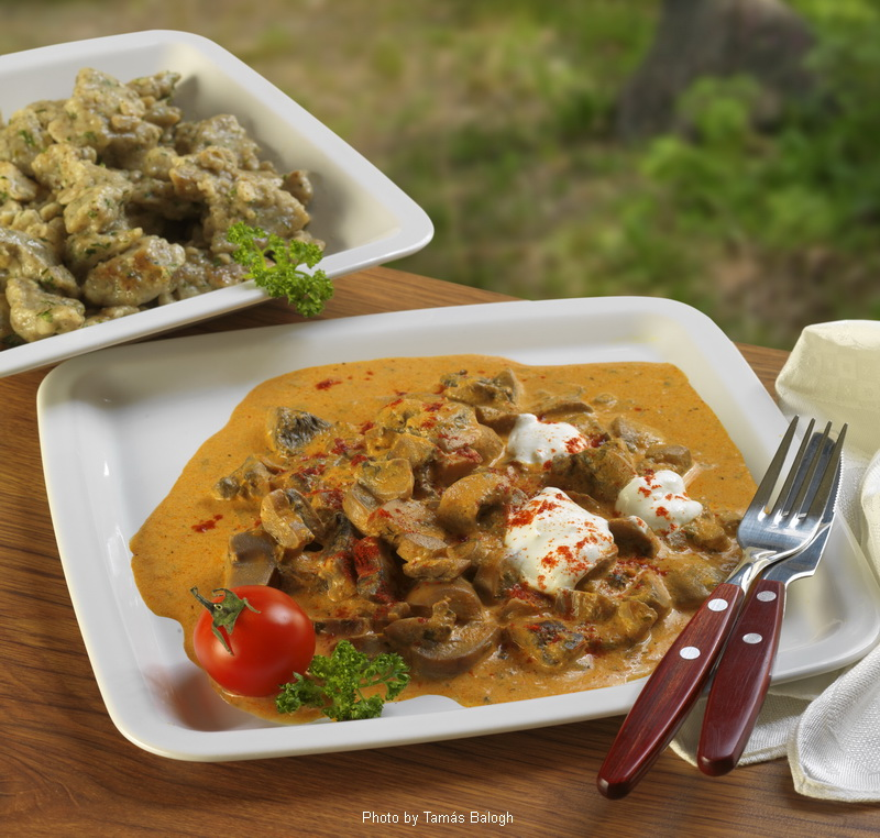 Ragoût de champignons  -  (Gombapörkölt)