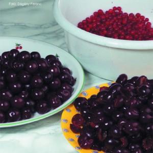 Vegyes gyümölcslekvár