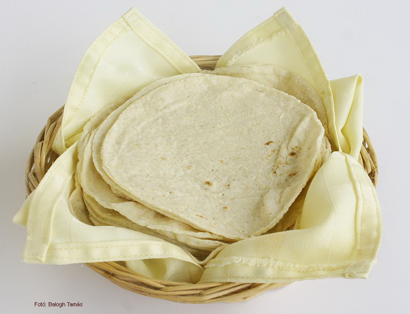 Making Tortillas - (Tortilla)