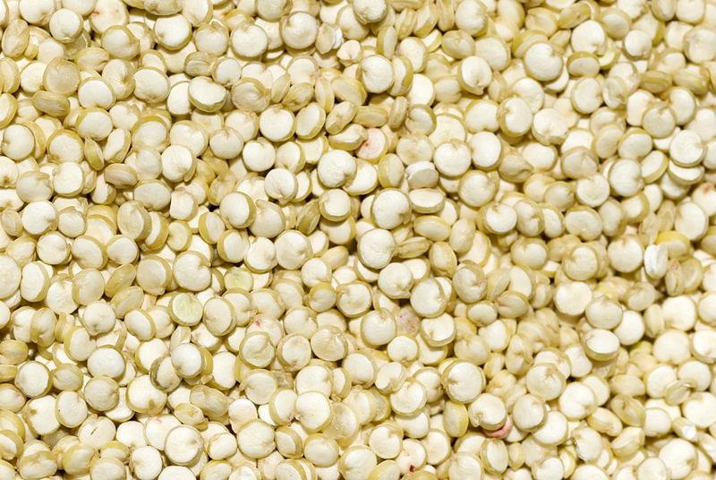 Quinoa - ejtsd kinoa