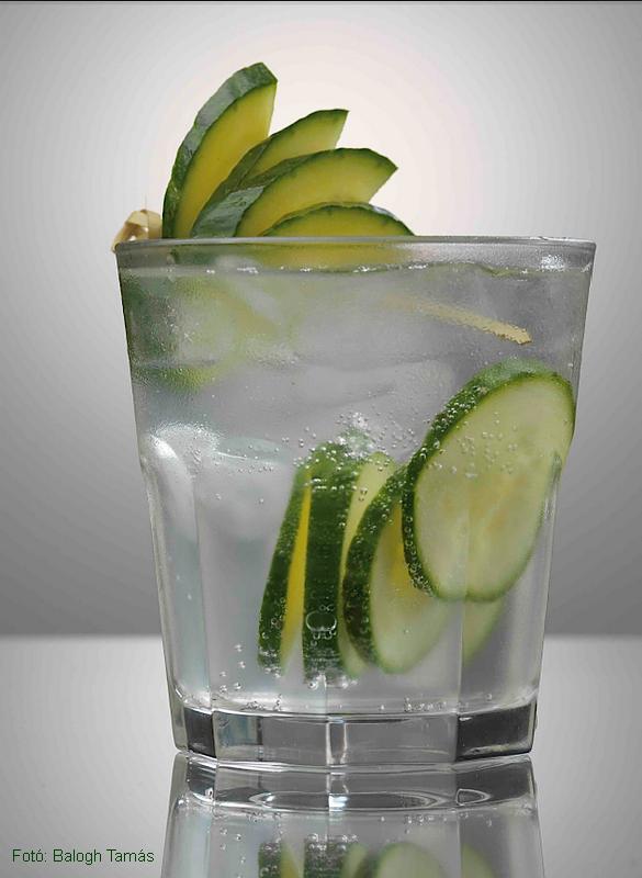 Hendrick's gin & tonik