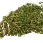 Kakukkfű (Thymus)
