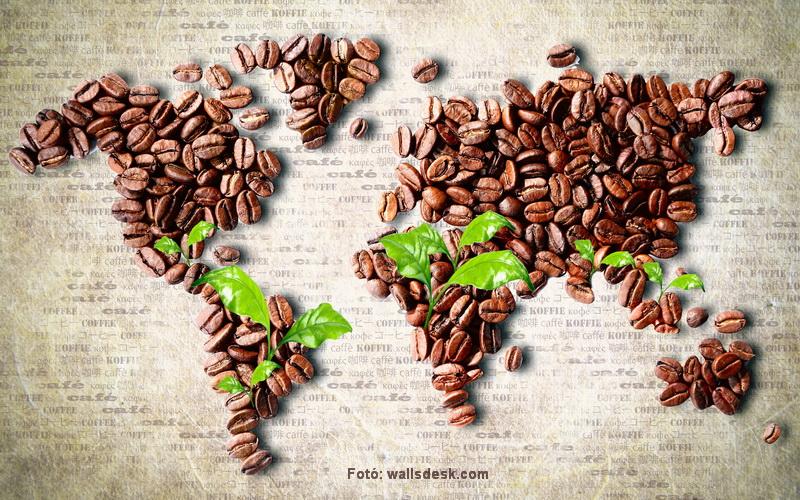 Kávézási szokásaink