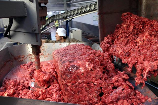 Mechanikusan szeparált hús
