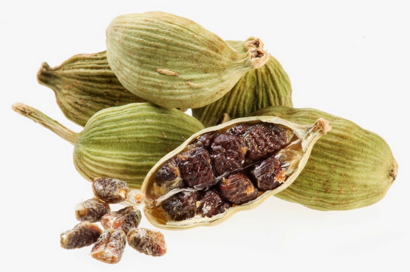 Kardamom (Elettaria cardamomum)
